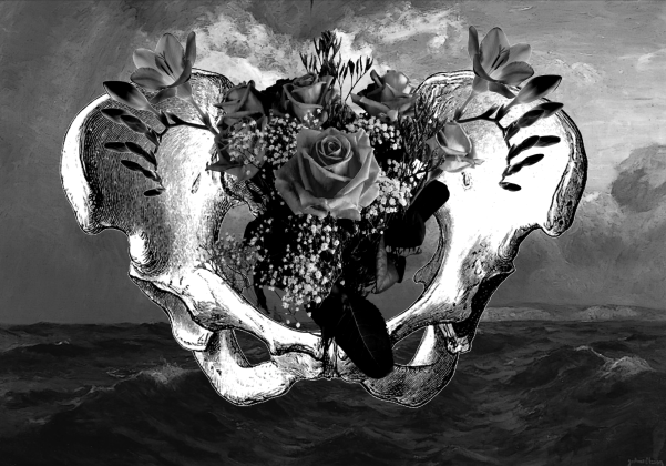 Digital photocollage of a pelvis against a stormy sea, with floral details in the shape of a uterus and ovaries